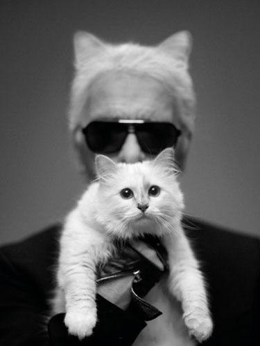 Karl & Choupette